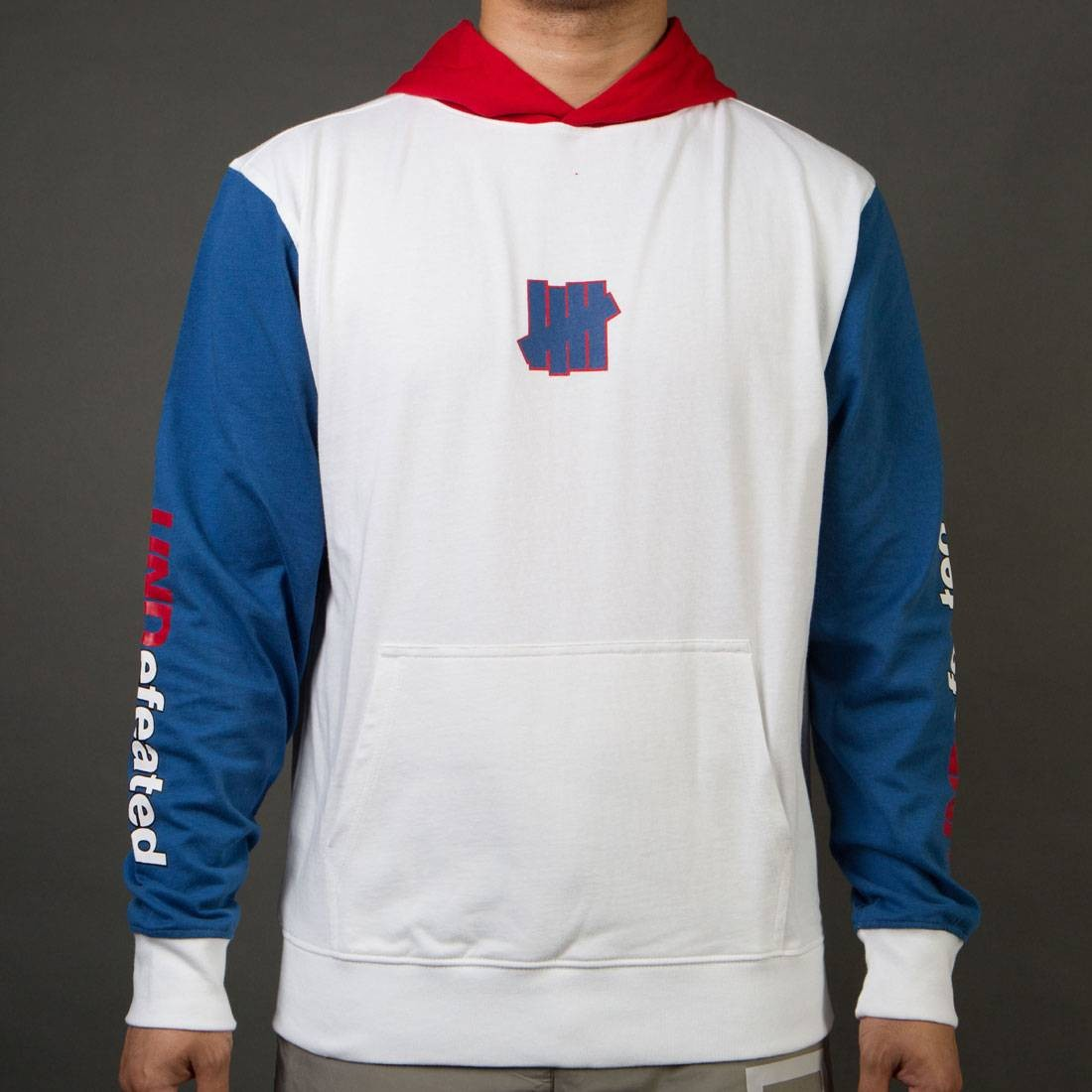 Undefeated Men Session Pullover Hoody (white)