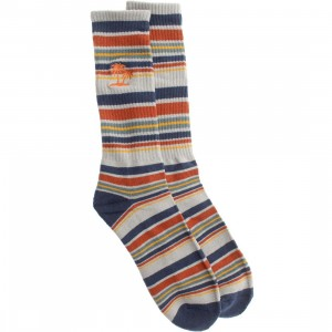 Vans Striper Crew Socks (gray / blue / pebble)