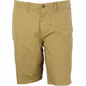 Vans Men Bedford Shorts (brown / bronze)