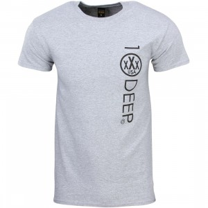 10 Deep Integral Logo Tee (gray / heather gray)
