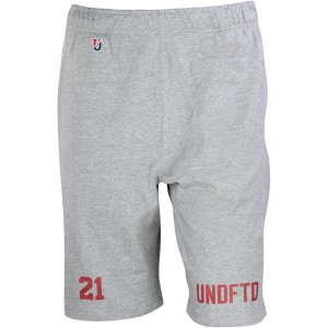 Undefeated Men 21 Sweat Shorts (gray / heather)