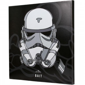 BAIT x David Flores Star Wars 24 Inch Canvas - Storm Trooper (white)