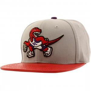 Pro Standard NBA Toronto Raptors Raptor Logo Adjustable Cap (gray / red)