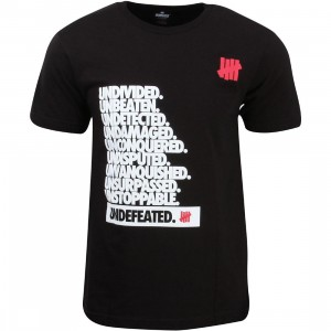 Undefeated Men Undivided Tee (black)