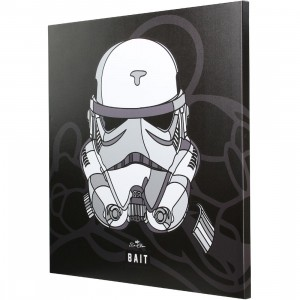 BAIT x David Flores Star Wars 36 Inch Canvas - Storm Trooper (white)