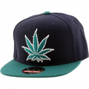 American Needle Experience Washington Legalized Cap (navy / aqua)