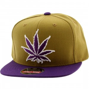 American Needle Experience Washington Legalized Cap (orange / purple)