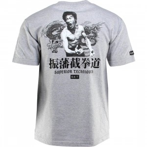 BAIT x Bruce Lee Superior Techniques Tee (gray / heather gray / black)