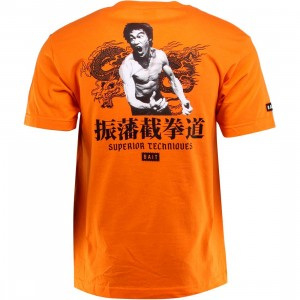 BAIT x Bruce Lee Superior Techniques Tee (orange / black)