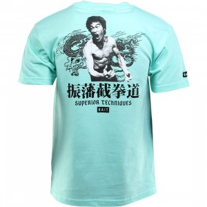 BAIT x Bruce Lee Superior Techniques Tee (teal / celadon / black)
