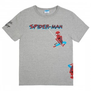 BAIT x Spiderman x Champion Men Spiderman Swing Tee (gray / oxford)