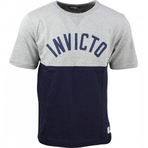 Undefeated Men Invicto Tee (gray / heather)