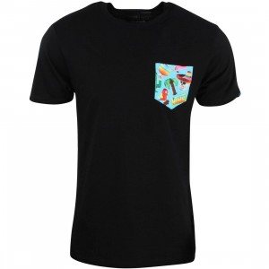 Vans Men Pinata Pocket Tee (black)