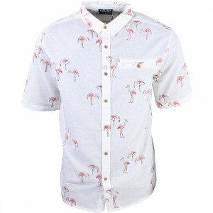 Lazy Oaf Men Flamingo Short Shirt (pink)
