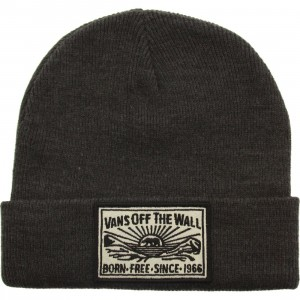 Vans Adare Beanie (gray / charcoal heather)