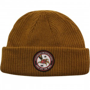 Vans Anti Hero Beanie (brown / golden)