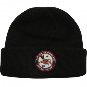 Vans Anti Hero Beanie (black)