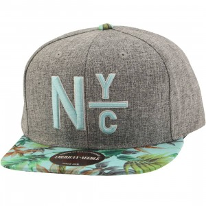 American Needle New York City Divided Night Bright Snapback Cap (gray)