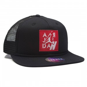 Air Jordan IV Pro Snapback Cap Men (black / black)