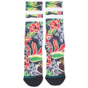 Stance Men Sinharaja Socks (black)