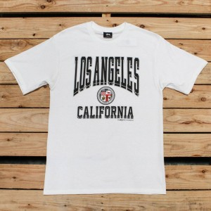Stussy Men Los Angeles California Tee (white)