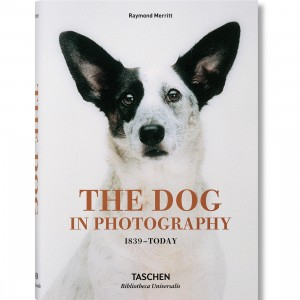 The Dog In Photography 1839-Today By Raymond Merritt Book (white / hardcover)