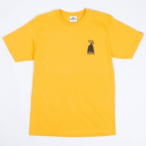 Undefeated Men Team Is Trash Tee (gold)
