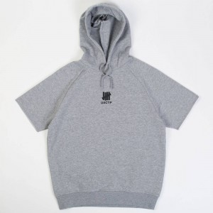Undefeated Men UACTP Short Sleeve Pullover Hoody (gray / heather)