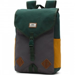 Vans Nelson Backpack (green)